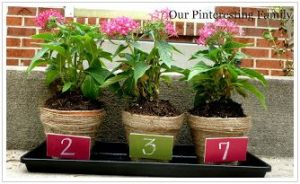 jute2 300x184 Homemade Mothers Day Gift Idea: Jute Wrapped Flower Pots