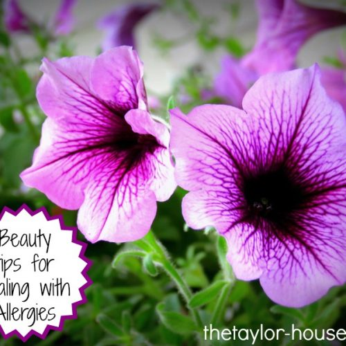 Beauty Tips for Dealing with Allergies