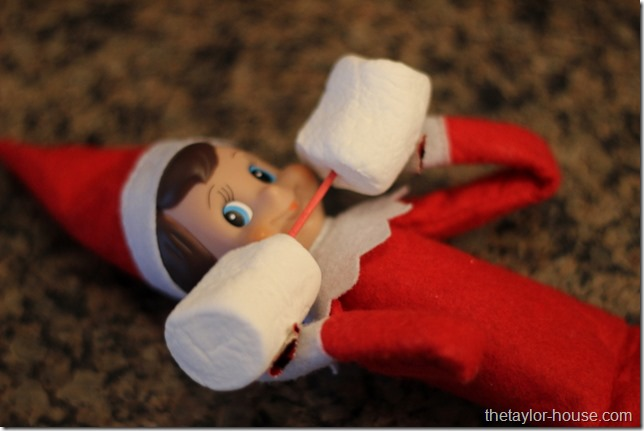 Elf On The Shelf, Elf On The Shelf Lifting Weights