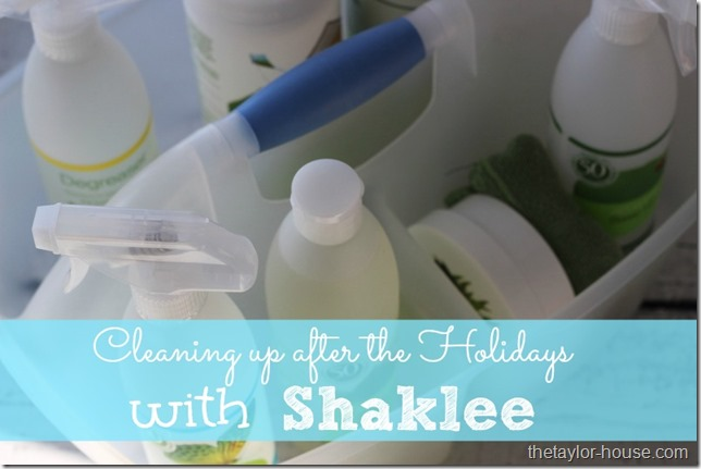 Shaklee Cleaners, New Years Organizing