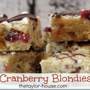 Cranberry Blondies
