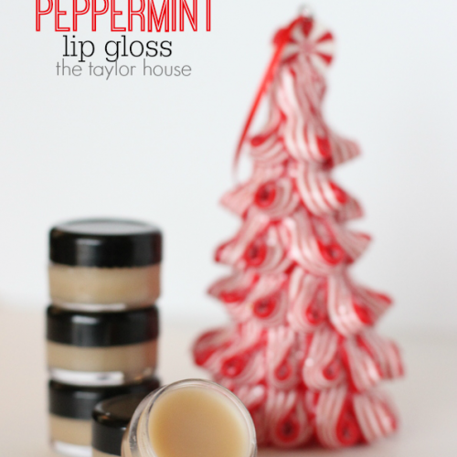 DIY Chocolate Peppermint Lip Gloss
