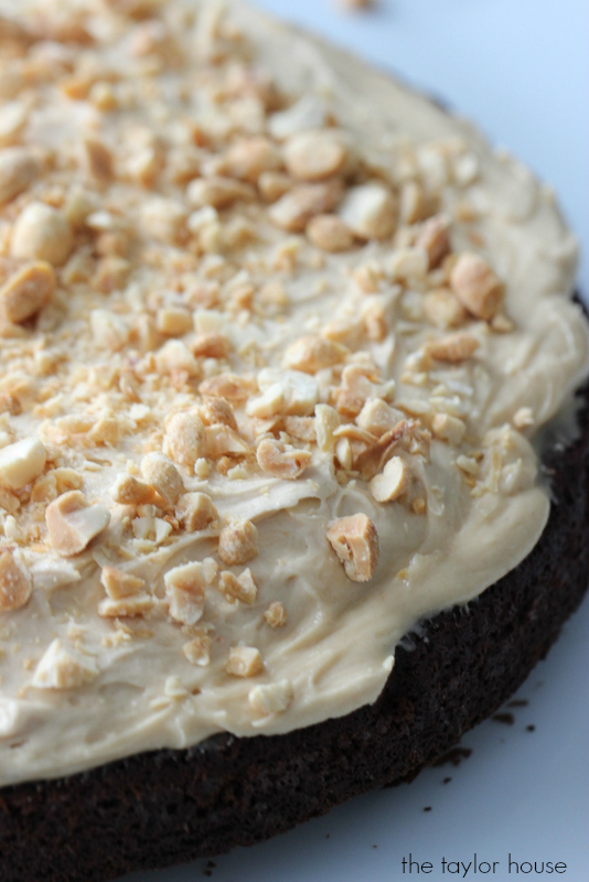 Peanut Butter Brownie Torte Recipe that your family will love!