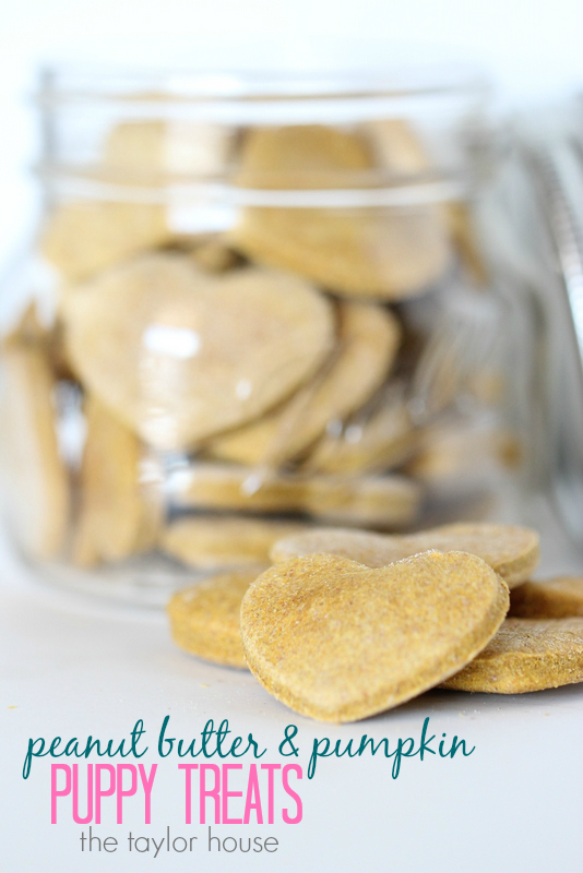 Easy to make Peanut Butter & Pumpkin Homemade Puppy Treats!