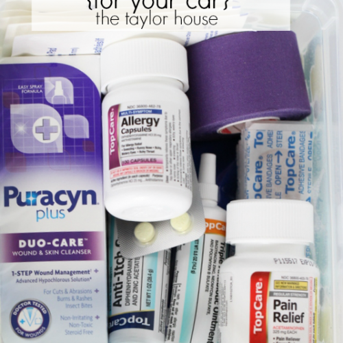 Emergency First Aid Kit for Your Car