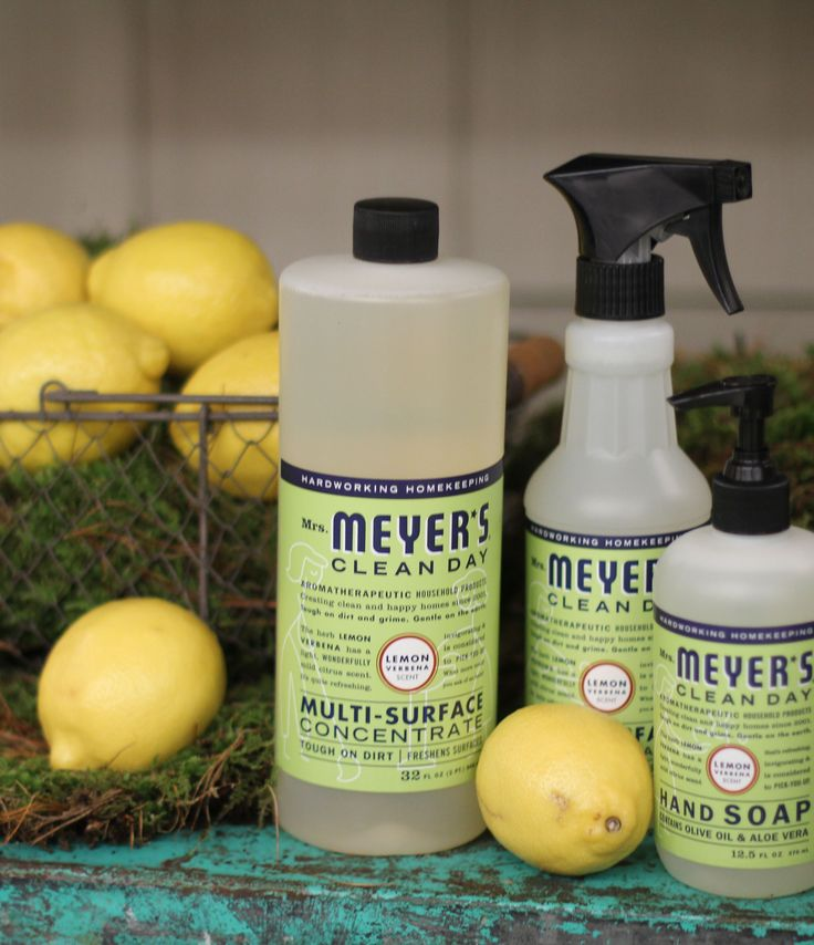 Free Cleaning Kit and Make your own Foaming Soap!
