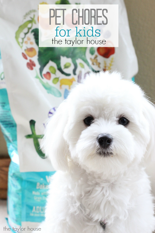 Pet Chores for Kids!