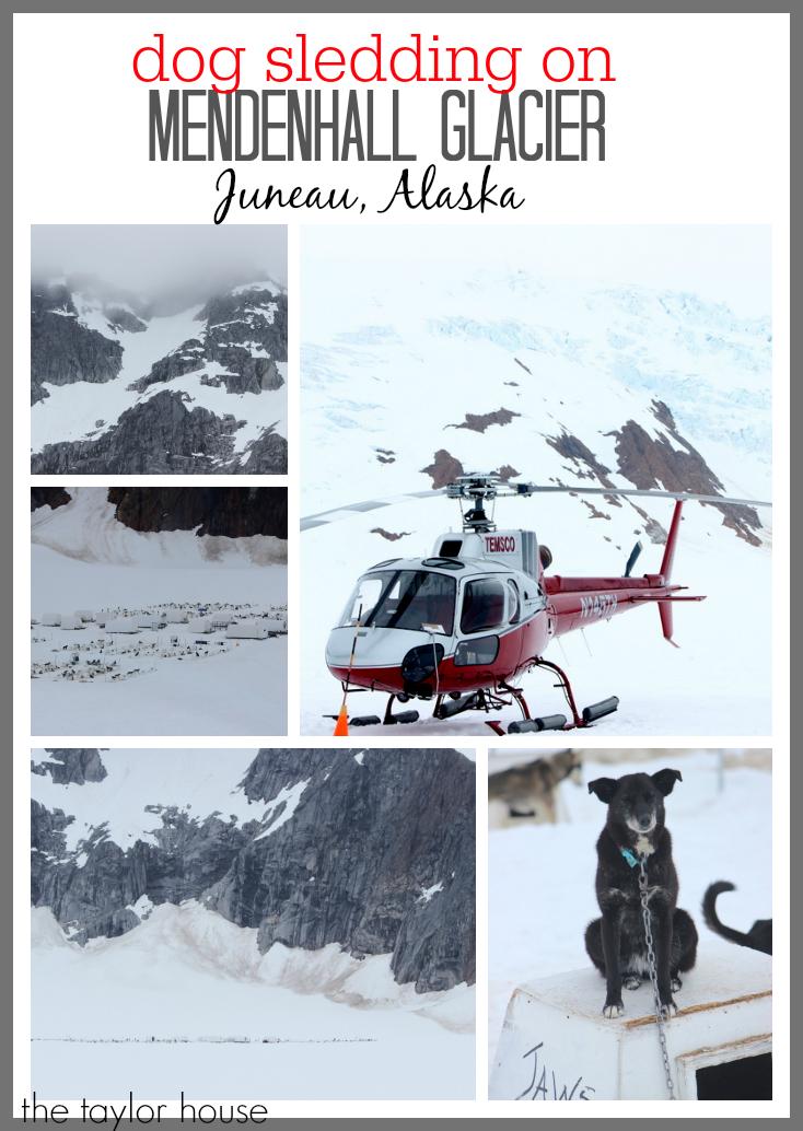 Trip Review: Juneau, Alaska