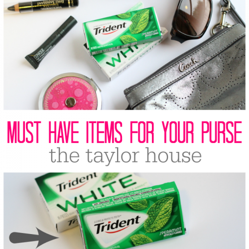 Must Have Items For Your Purse
