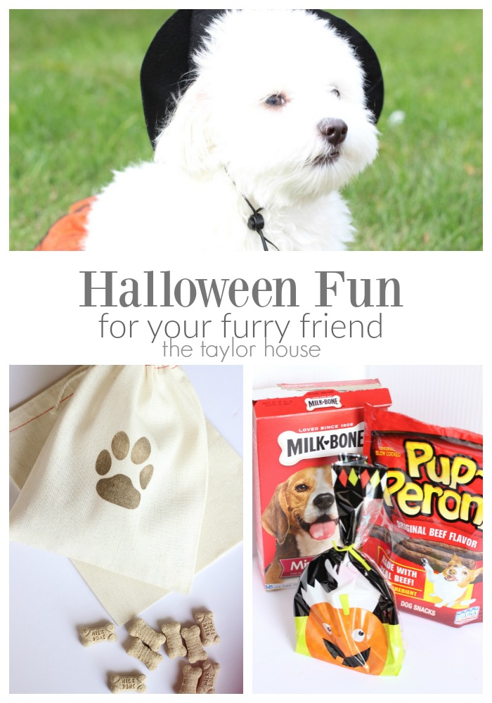 Simple to make Halloween Treats for Dogs!
