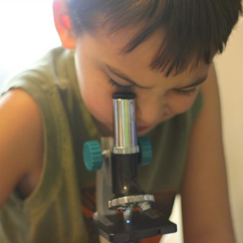 How to Get a Child Excited About Science and Stem Activities