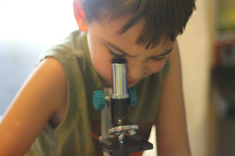 How to Get a Child Excited about Science and Stem Activities!