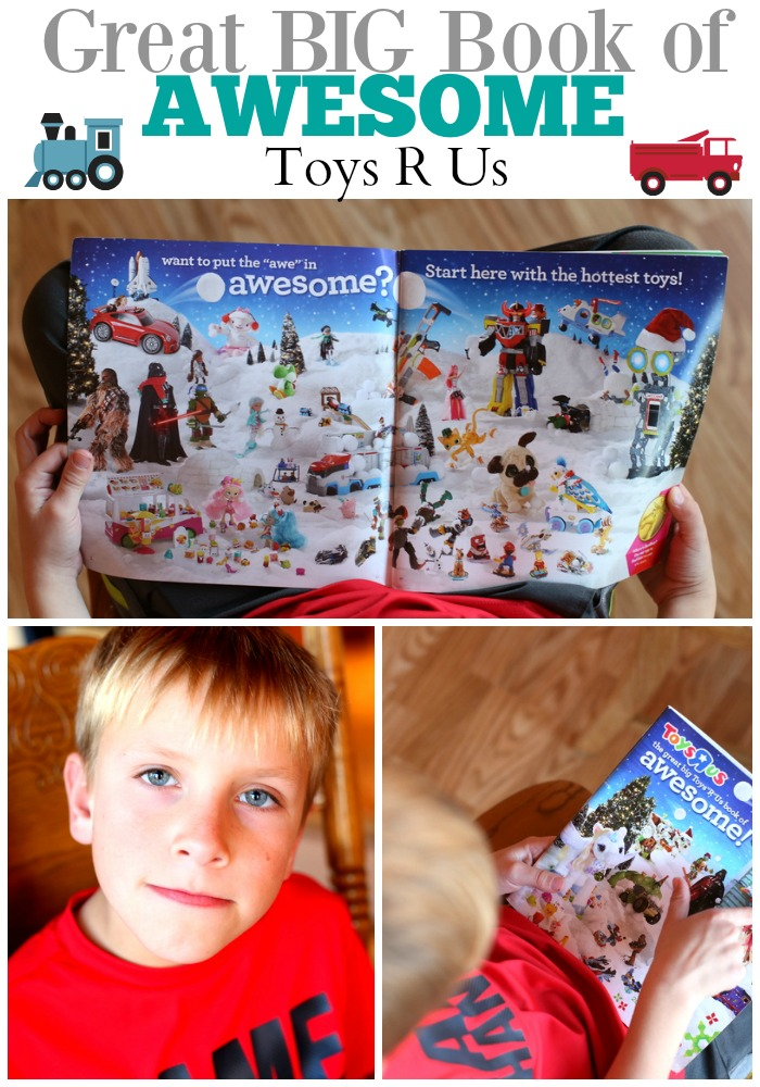 Great Big Toys R Us Book of Awesome!