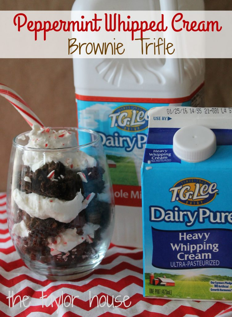 peppermint brownie trifle