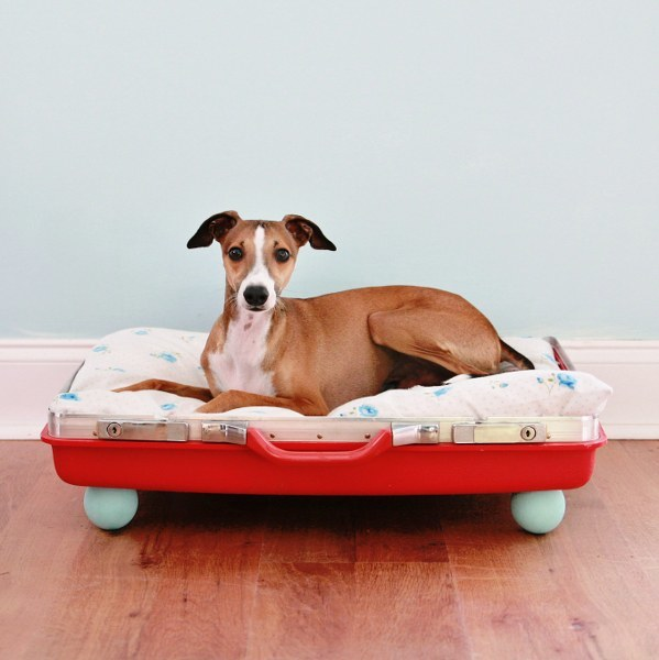 Dog Bed made from and old suitcase