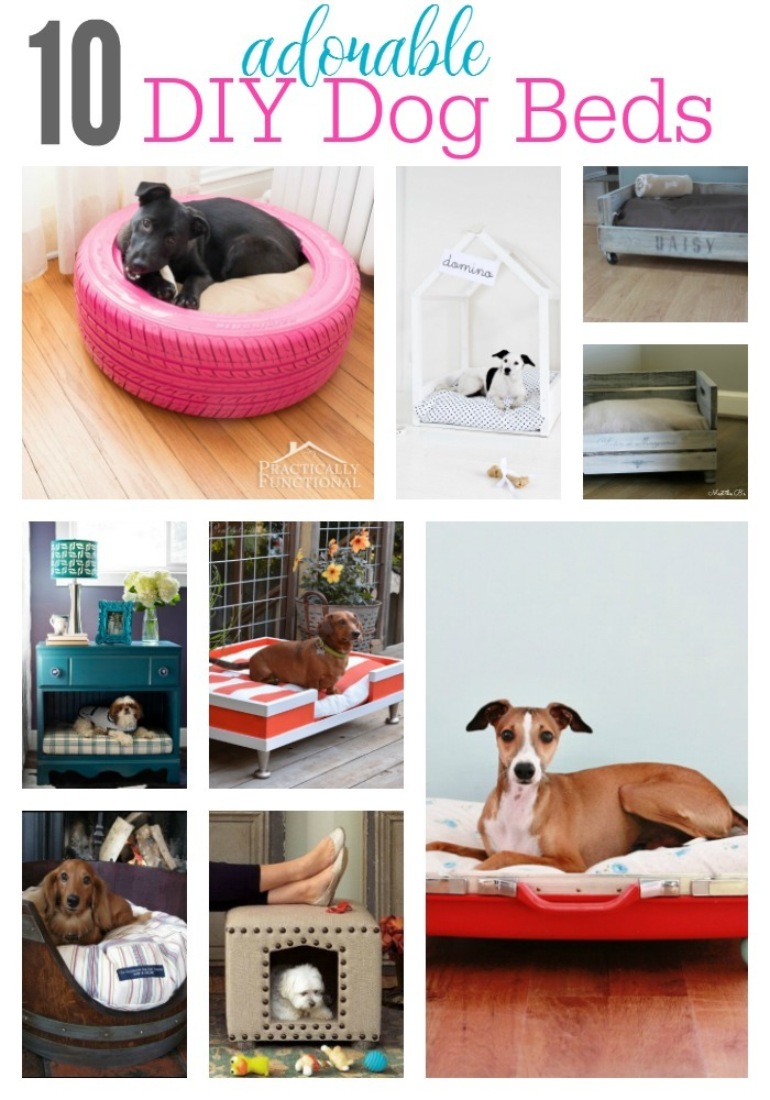 Pleasant Diy Dog Bed Ideas The Taylor House Inzonedesignstudio Interior Chair Design Inzonedesignstudiocom