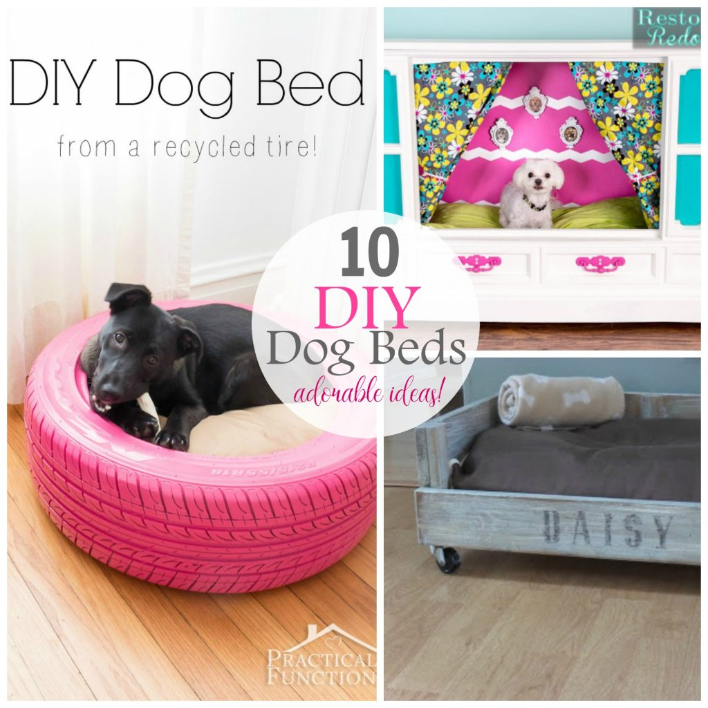 10 Adorable Dog Bed Ideas that YOU can make!