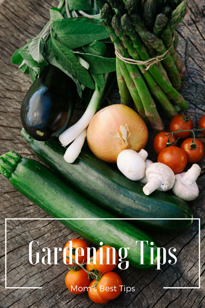 Moms Best Gardening Tips