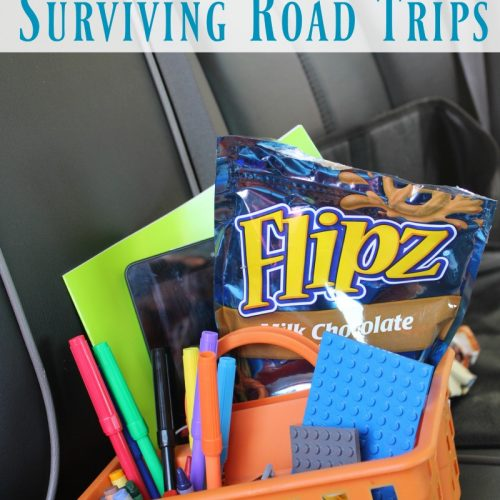 Five Tips for Surviving Road Trips