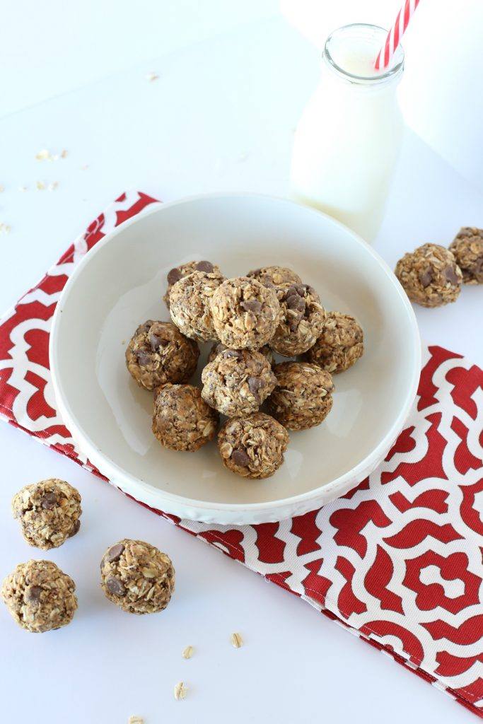 Easy and Nutritious Protein Snack Balls - Peanut butter & Chocolate chips make this the perfect snack to pair with a cold glass of milk!