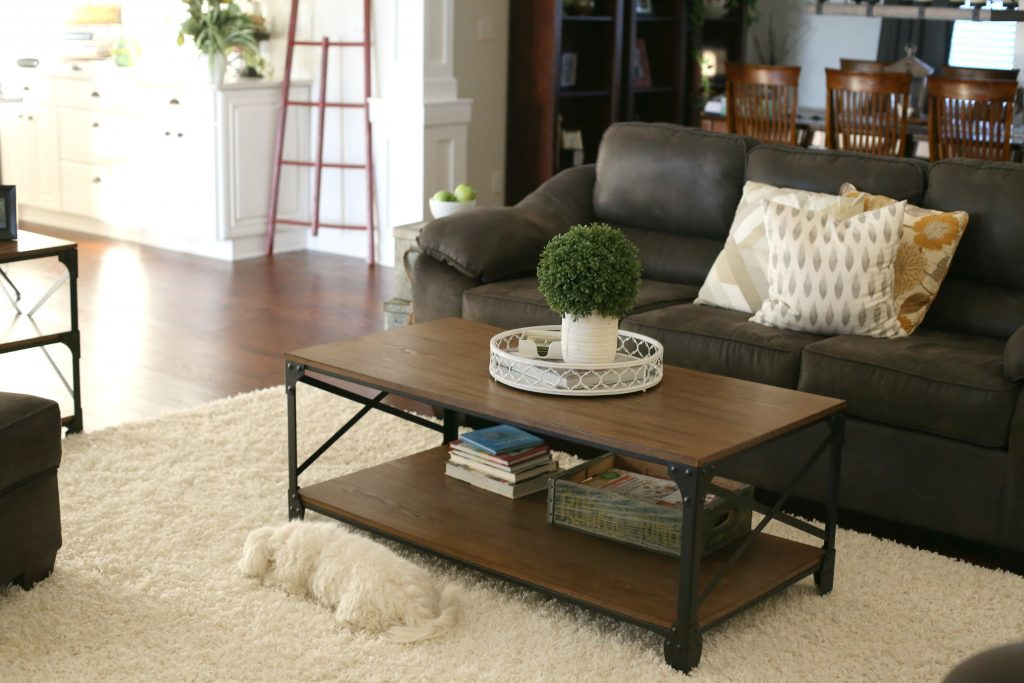 Living Room Decor from Wayfair