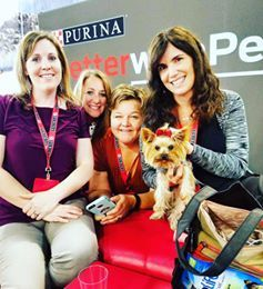 PURINA'S BETTER WITH PETS SUMMIT 2016 #LETSLIVEBIG
