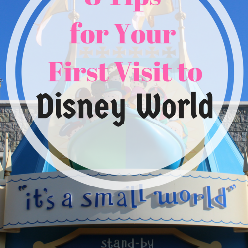 8 Tips for Your First Visit to Disney