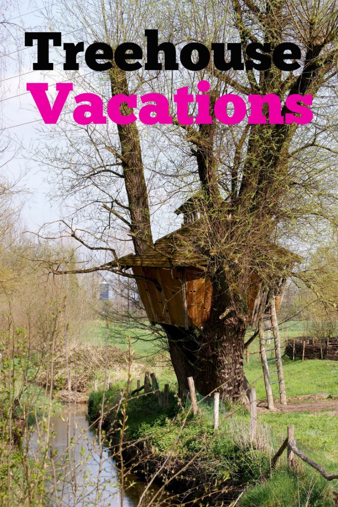 The BEST TREEHOUSE VACATION