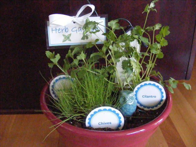 DIY Herb Garden for the kitchen